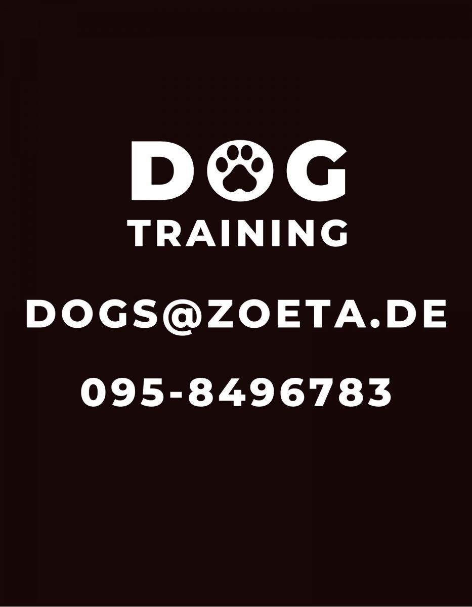 dog-training-side